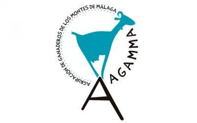 Agamma